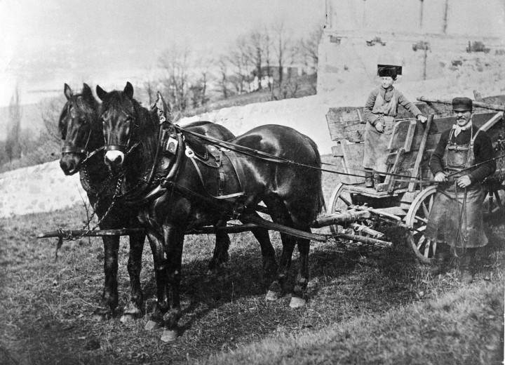 Kohlenfuhrwerk am Kotzsch-Haus, um 1890. Foto:August Kotzsch, Archiv Ernst Hirsch. Auf dem Wagen der etwa zehnjährige Otto, für den die beschwerliche Bergfuhre nach dem elterlichen Anwesen stets ein besonderes Erlebnis war.