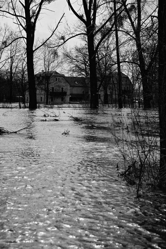 """Mitten im Wasser, aber mit trockenen Wohnungen – die """"Schanze"""" in Hosterwitz. Foto: Jürgen Frohse"""