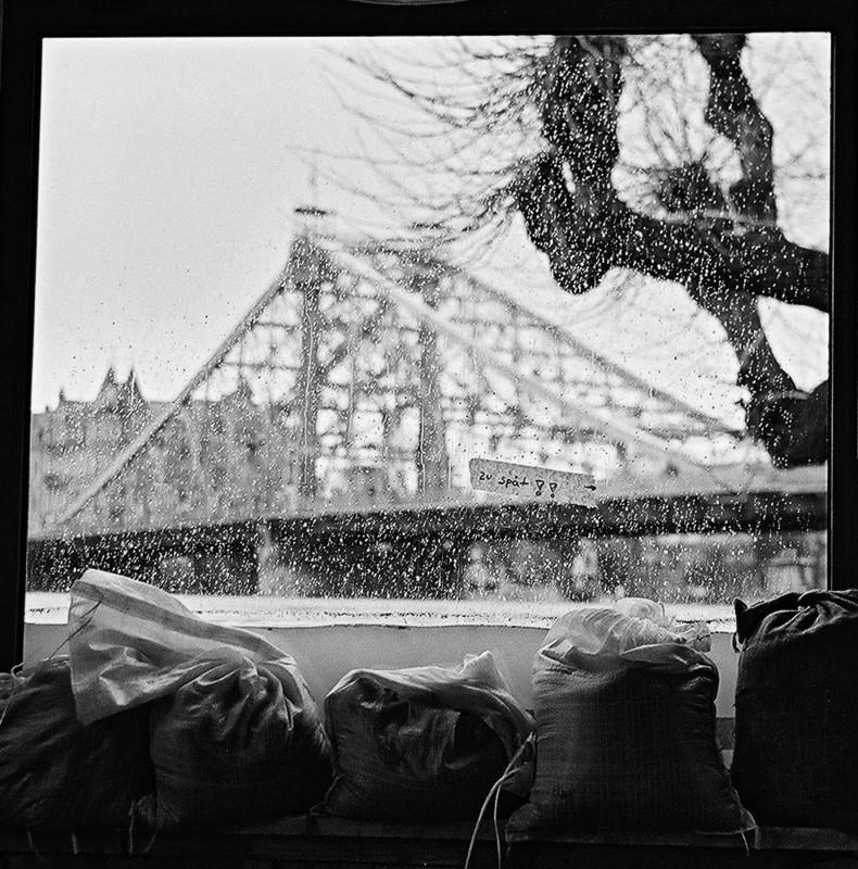 Aquarium Elbe – an die Fenster des Körnergartens drückte der Fluss. Foto: Jürgen Frohse