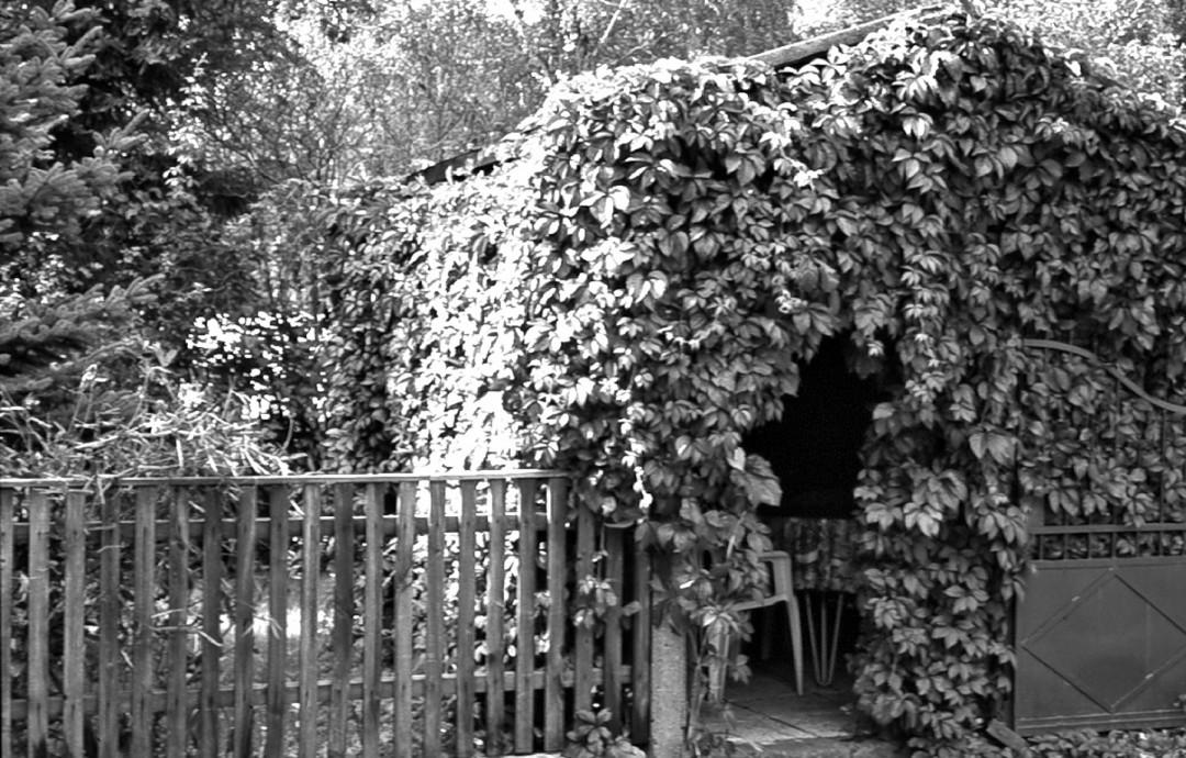Die Laube Am Bauernbusch 1. Foto: Sammlung Lorenz