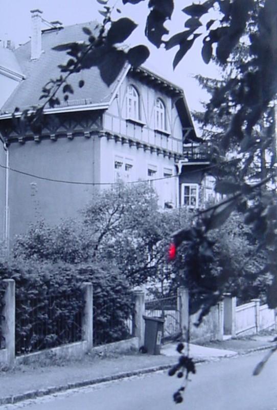 """Oskar-Pletsch-Straße 10 – Vorbild für das """"Haus Abendstern"""". Foto: Archiv Uwe Tellkamp"""