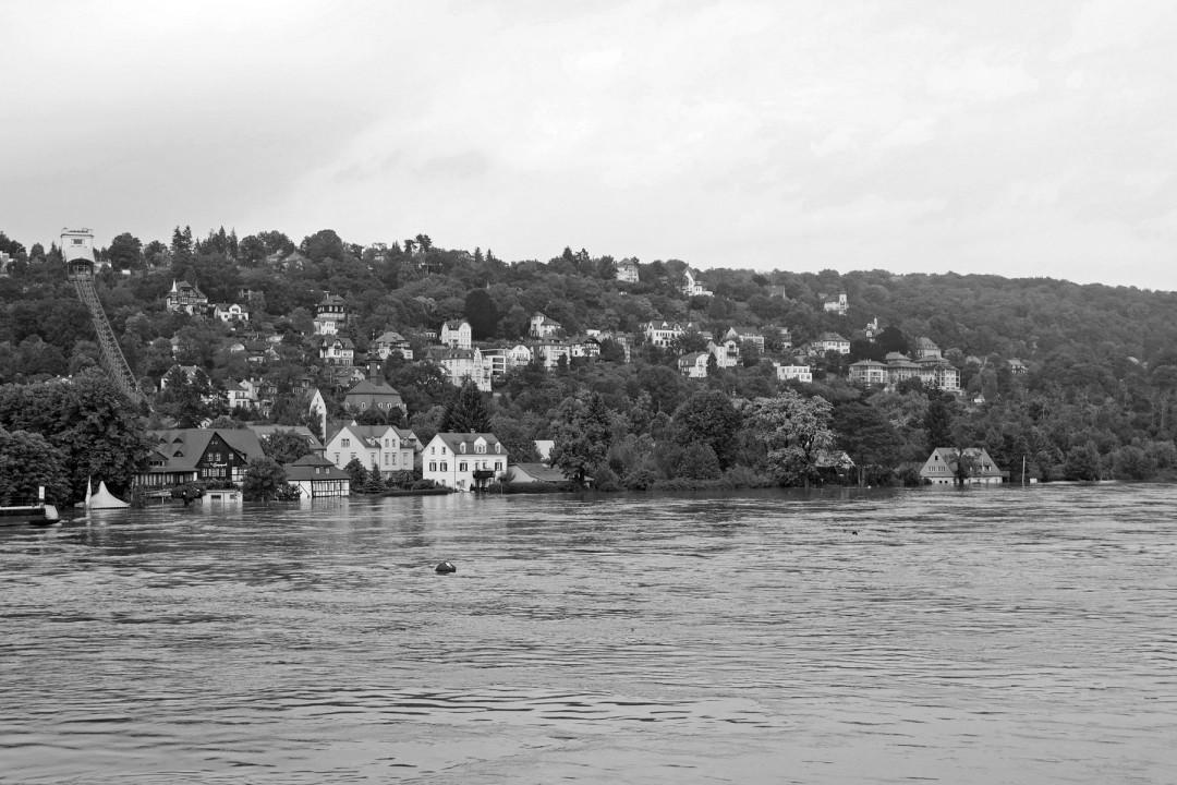 Überflutetes Loschwitz bei Pegel 7,90 Meter. Foto: Gregor Fischer