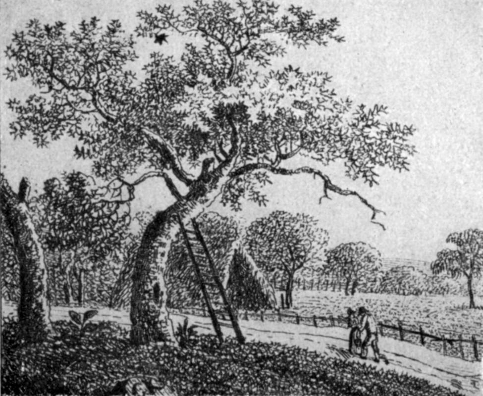 Radierung von Theodor Körner – aus seinem grafischen Nachlass. Quelle: Volksbücher der Literatur, Nr. 6, Slg. Waltraud Hoffmann