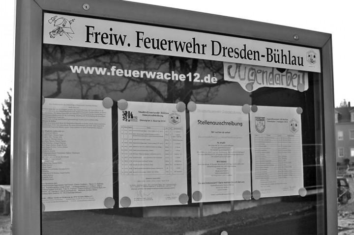 Die Jugendfeuerwehr ist seit einigen Jahren ein fester Bestandteil der Freiwilligen Feuerwehr Dresden-Bühlau. Foto: Katharina Genz