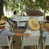 2016-07_Elbhangfest-Pillnitz-Blutbuche