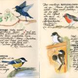 Vogelwelt_01-02_VB