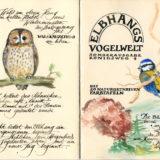 Vogelwelt_U1-U4_VB